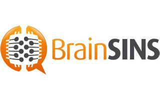 Brainsins